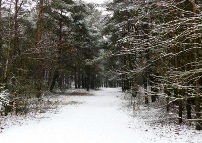 Odosobnienie-zima-3-