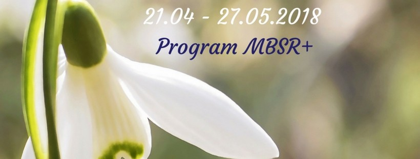 """Program MBSR+ """"Bądź bardziej, żyj uważniej"""""""