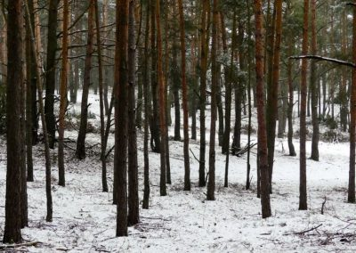 Odosobnienie-zima-29-