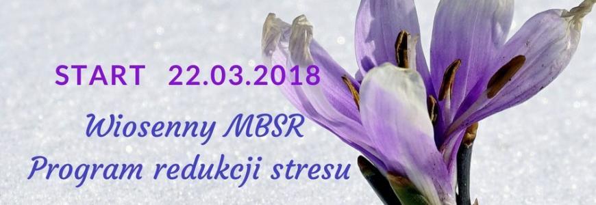 Wiosenny MBSR z Moniką Witkowską