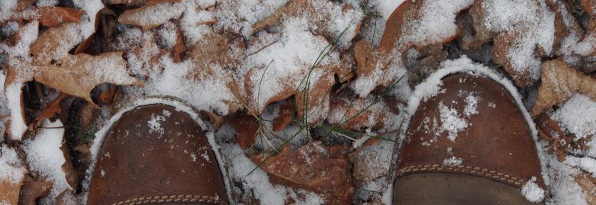 Zimowe Zatrzymanie 2018 – wspomnienie