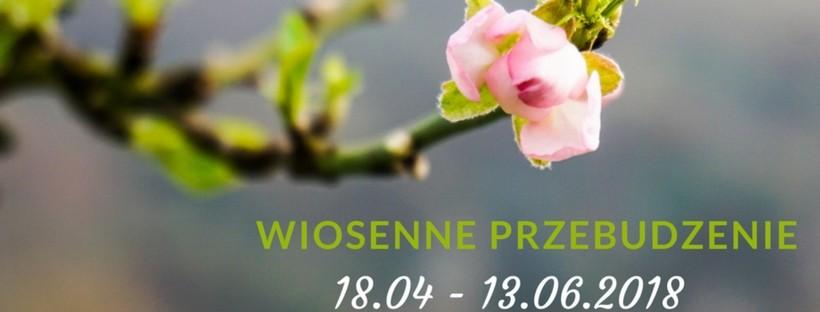 MBSR z Moniką Witkowską – Wiosenne przebudzenie